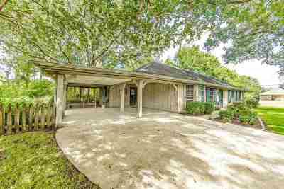 Thibodaux Single Family Home For Sale: 250 Bayou Vista Drive