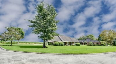 Thibodaux Single Family Home For Sale: 203 East Plater Drive