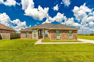 Thibodaux Single Family Home For Sale: 177 Esplanade Boulevard