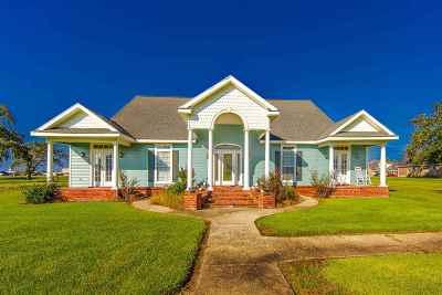 Houma Single Family Home For Sale: 5764 Vicari Street