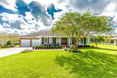 Houma Single Family Home For Sale: 111 West Ellendale Estates