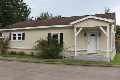 Patterson Single Family Home For Sale: 701 Main Street