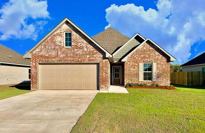 Thibodaux Single Family Home For Sale: 156 Colony Station