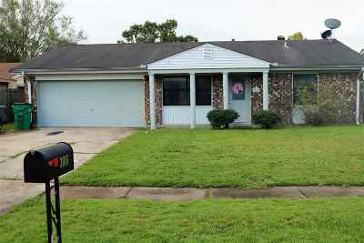 Morgan City Single Family Home For Sale: 3016 Lizabeth Drive
