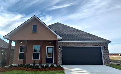 Thibodaux Single Family Home For Sale: 302 Magazine Loop