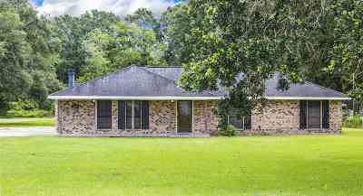 Schriever Single Family Home For Sale: 115 Back Project Road