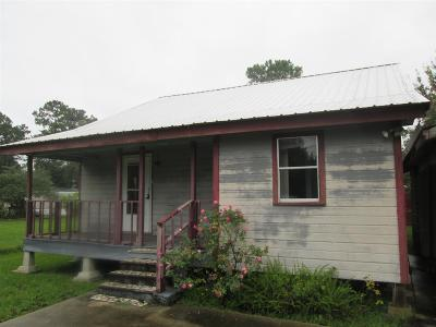 Napoleonville Single Family Home For Sale: 154 Georgette Street
