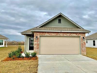 Thibodaux Single Family Home For Sale: 131 Colony Station