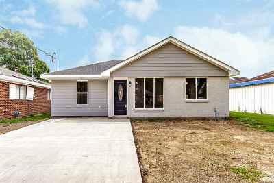 Houma Single Family Home For Sale: 217 Holiday Drive