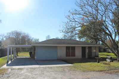 Gray Single Family Home For Sale: 217 North Terrebonne Drive
