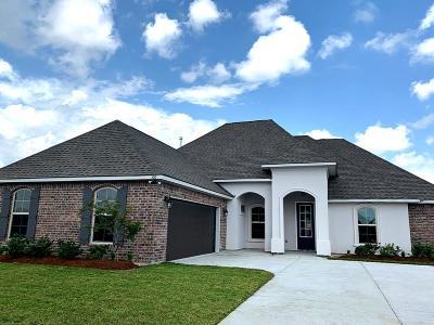 Thibodaux Single Family Home For Sale: 100 Kings Wood Avenue