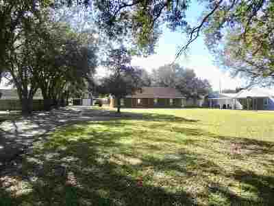 Thibodaux Single Family Home For Sale: 445 Highway 304