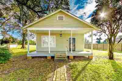 Napoleonville Single Family Home For Sale: 4042 Highway 1