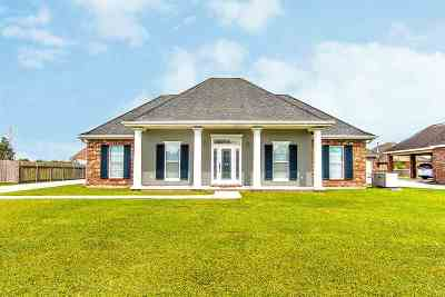 Thibodaux Single Family Home For Sale: 308 Meadow View Court