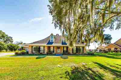 Napoleonville Single Family Home For Sale: 105 Oak Street