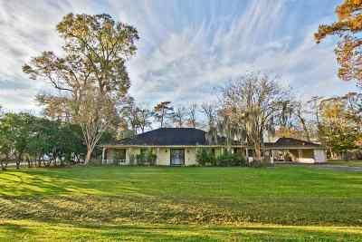 Houma Single Family Home For Sale: 111 Holly Drive