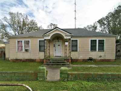 Napoleonville Single Family Home For Sale: 121 Highway 401