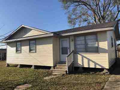 Gray Single Family Home For Sale: 119 Aselane Street