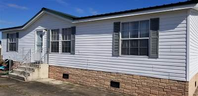 Gray Single Family Home For Sale: 133 Little Rock Drive