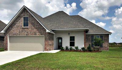 Thibodaux Single Family Home For Sale: 307 Pond Drive