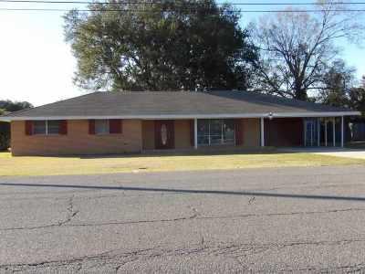 Thibodaux Single Family Home For Sale: 806 Barbier Avenue