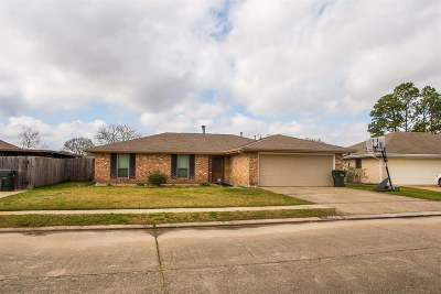 Houma Single Family Home For Sale: 406 Pineland Drive