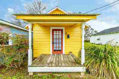 Thibodaux Single Family Home For Sale: 123 North 10th Street