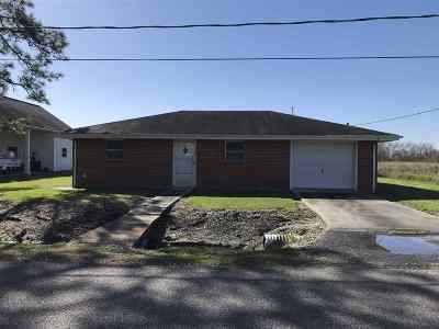 Cut Off Single Family Home For Sale: 352 East 43rd Place