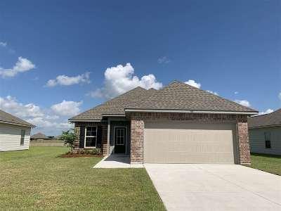 Thibodaux Single Family Home For Sale: 163 Colony Station