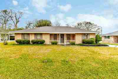Napoleonville Single Family Home For Sale: 119 Elmfield Drive