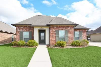 Thibodaux Single Family Home For Sale: 170 Lake Accardo Avenue
