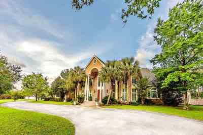 Thibodaux Single Family Home For Sale: 206 Cedar Tree Drive