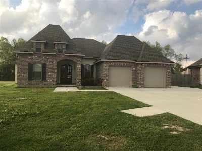 Houma Single Family Home For Sale: 173 Godchaux Drive