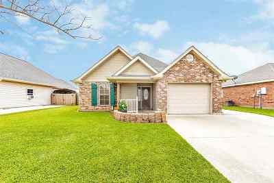 Gray Single Family Home For Sale: 174 Blue Ridge Drive