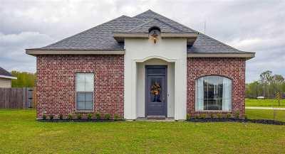 Gray Single Family Home For Sale: 197 Blue Ridge Drive