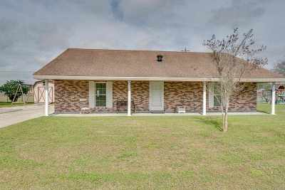 Gray Single Family Home For Sale: 221 Cindy Lane