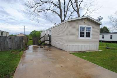 Houma Single Family Home For Sale: 205 Hummingbird Drive