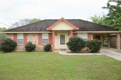Patterson Single Family Home For Sale: 725 David Drive