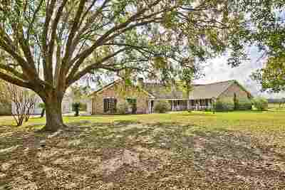Gray Single Family Home For Sale: 3039 Highway 316