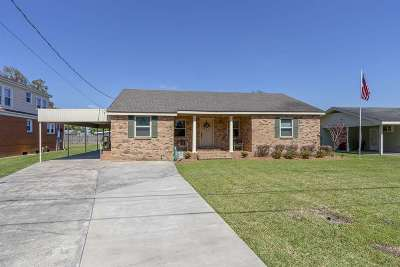 Napoleonville Single Family Home For Sale: 4814 Highway 308