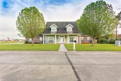 Houma Single Family Home For Sale: 507 Cougar Drive
