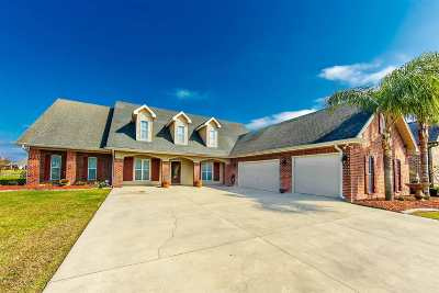 Houma Single Family Home For Sale: 381 Tigerlily Drive