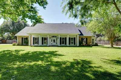 Thibodaux Single Family Home For Sale: 220 Rienzi Drive