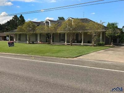 Napoleonville Single Family Home For Sale: 4542 Highway 1