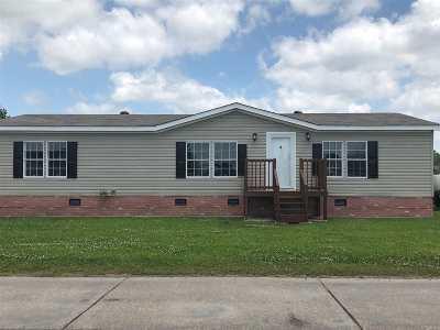 Gray Single Family Home For Sale: 166 Mia Drive