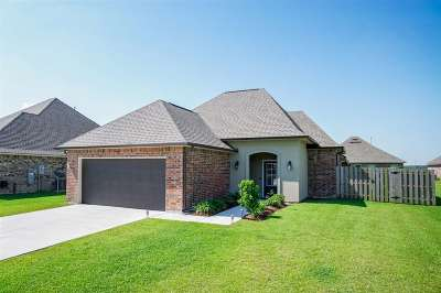 Thibodaux Single Family Home For Sale: 181 Natale Park Drive
