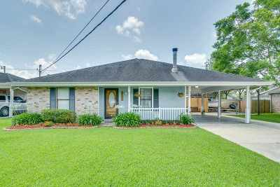 Houma Single Family Home For Sale: 410 Idlewild Drive