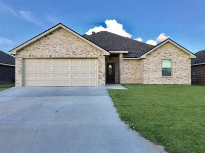 Houma Single Family Home For Sale: 416 Galvez Lane