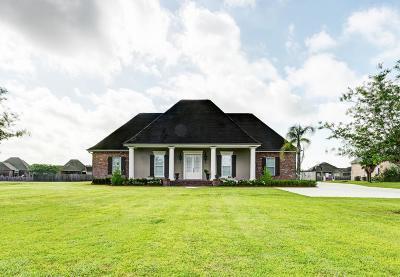 Thibodaux Single Family Home For Sale: 414 Abby Road