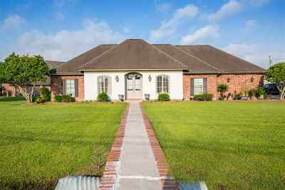 Thibodaux Single Family Home For Sale: 169 Autumn Ridge Drive